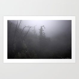 Fog in the crest Art Print