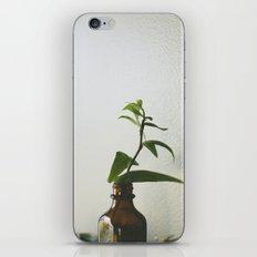 Home #3 iPhone & iPod Skin