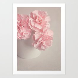 Frilly pink Carnations flowers. Art Print