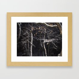 Backyard Snow Framed Art Print