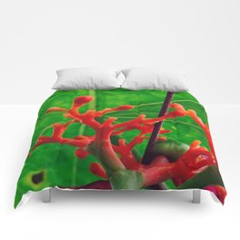Coral Beauty Comforters