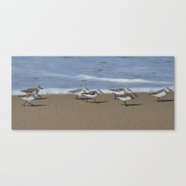 wave runners Canvas Print