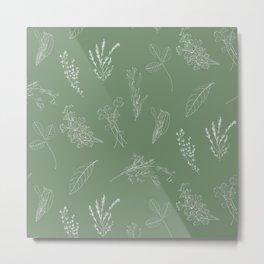 Kitchen herbs 003 Metal Print