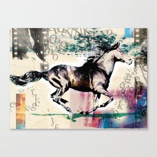 horse 01 Canvas Print