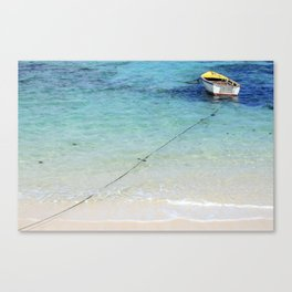 Tied Off Canvas Print