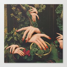Touch Plants Canvas Print