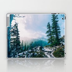 Overlook the Wilderness Laptop & iPad Skin