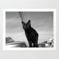 shadow Art Prints featuring shadow by Dottie