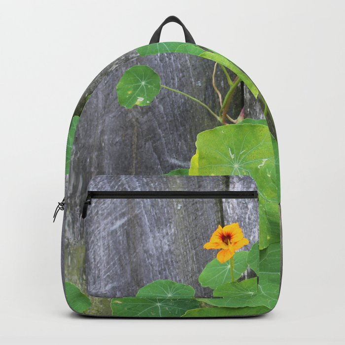 The Garden Wall Backpack