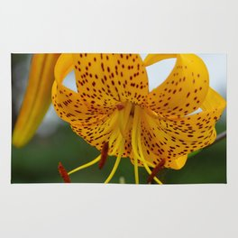 Yellow Spotted Lily by Teresa Thompson Rug