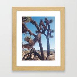 JT Framed Art Print