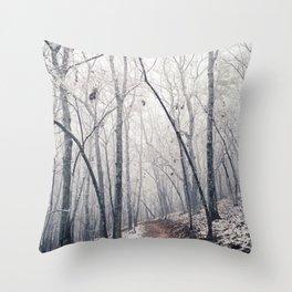 Winter Path (Color) Throw Pillow