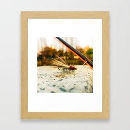 Caddis Fly Framed Art Print