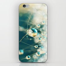 Sea Blue & Sand Cactus Drops iPhone & iPod Skin