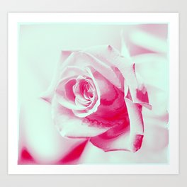 A Rose is a Rose... Art Print