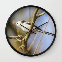 Long-tailed tit on branch (Aegithalos caudatus) Cute little Bird Wall Clock