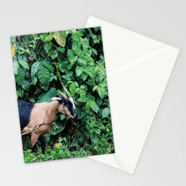 Jungle Goat Stationery Cards