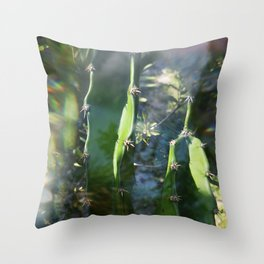 Rainbow Cactus Throw Pillow