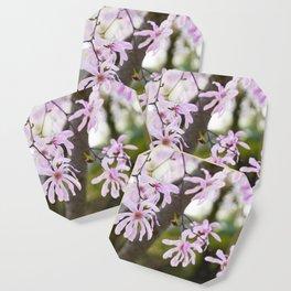 Pink Magnolia Coaster