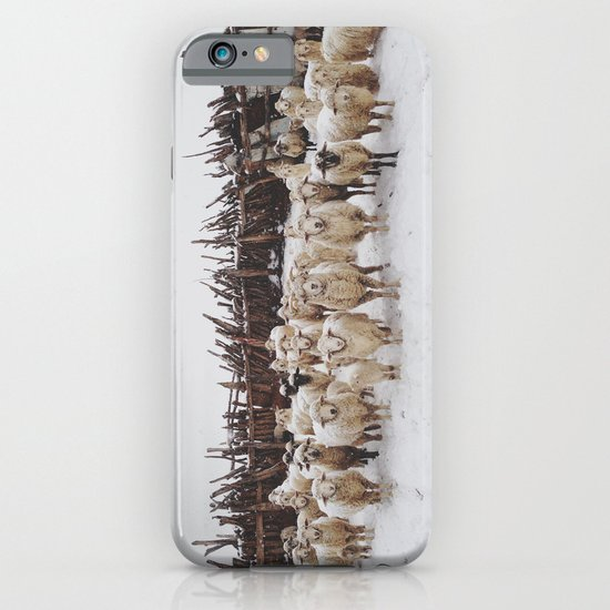 Snowy Sheep Stare iPhone & iPod Case