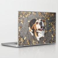 beagle Laptop & iPad Skins featuring Beagle by Renata's Photobox