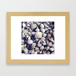 Cockle shells Framed Art Print