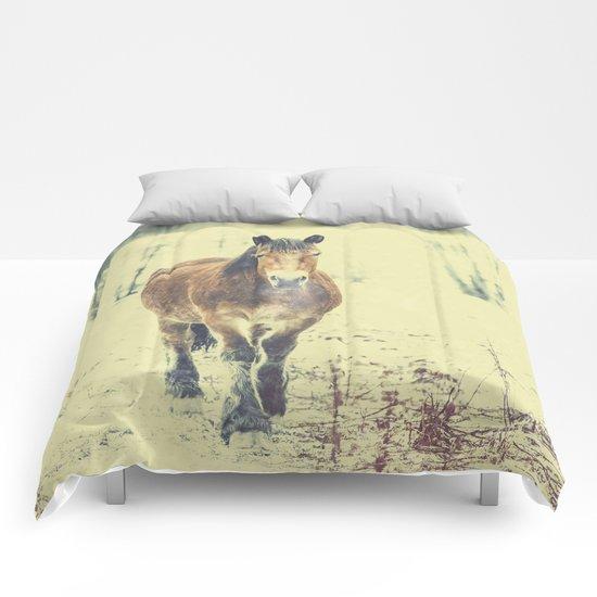 Wandering beauty Comforters