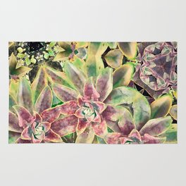 Green and Pink Succulent Rug