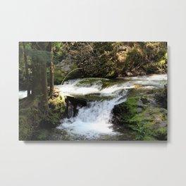 babbling brook Metal Print