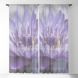Purple Water Lily Sheer Curtain