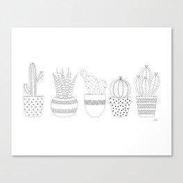 Cactus Sketch Canvas Print
