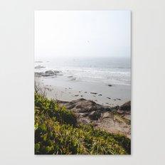 Coast + Fog Canvas Print