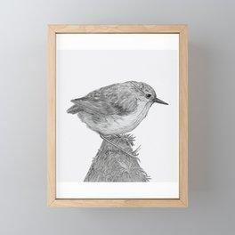 Rifleman - New Zealand Native Bird Framed Mini Art Print