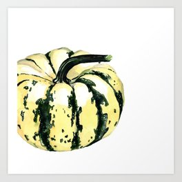 Fall Harvest. Winter Squash. Watercolor painting. Art Print