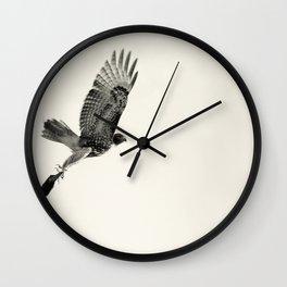 Red-Tail Hawk on Columbia River, Washington, Bird, Wildlife Wall Clock
