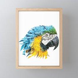 Scarlet Macaw Parrot  Framed Mini Art Print