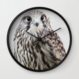 small hawk portrait Wall Clock