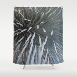Growing grays Shower Curtain