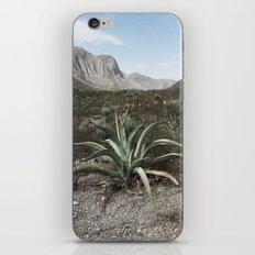 Mexico Century iPhone & iPod Skin