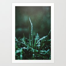 Spring Morning Art Print