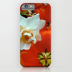 Orange and White Flowers iPhone 6s Slim Case