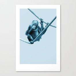 Monochrome - Hanging around Canvas Print