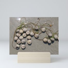Sea Urchin Necklace Mini Art Print