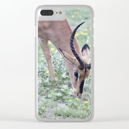 deer eating Clear iPhone Case