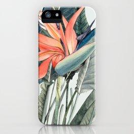 Bird of Paradise iPhone Case