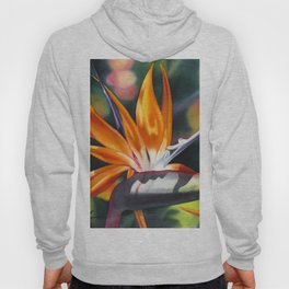 Bird of Paradise 20 Hoody