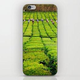 Porto Formoso tea gardens iPhone Skin