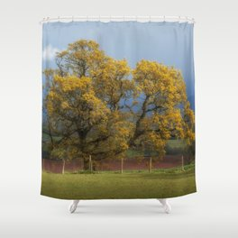 Sunlight before the Storm Shower Curtain