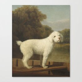 George Stubbs White Poodle in a Punt c. 1780 Canvas Print