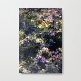 Wild Flower exposures Metal Print